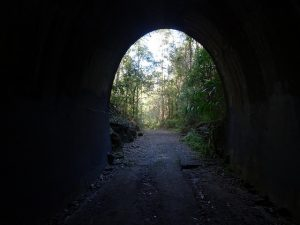 Old railway tunnel at Dularcha National Park, QLD, Australia
